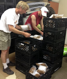 Volunteers packing pet food in	crates for the Helena Food Share